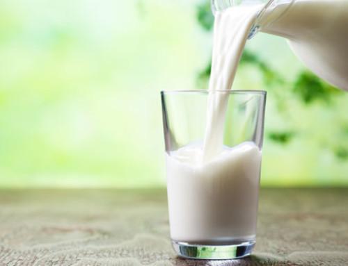 Come migliorare le qualità nutraceutiche del latte
