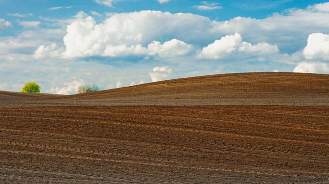 Agricoltura : Pepe, all'Abruzzo oltre 7,5 mln di fondi europei