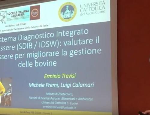 WORKSHOP SIB-SISVET BENESSERE Brescia 25 maggio 2017: Ermino Trevisi – Università Cattolica di Piacenza