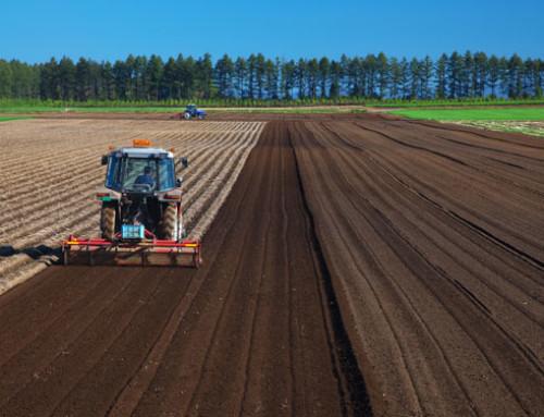 La direttiva UE sulle energie rinnovabili stabilisce un futuro stabile per i biocarburanti liquidi e solidi