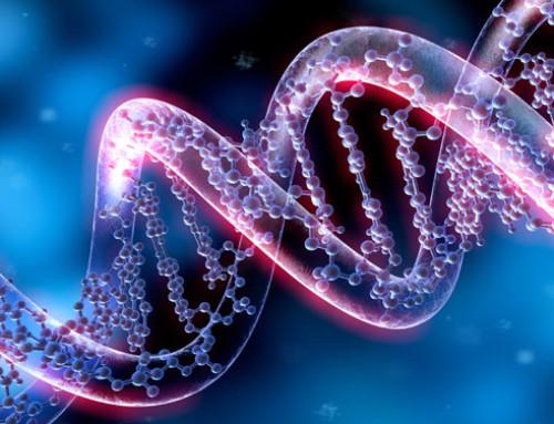 Il primo indice genetico ufficiale per la resistenza allo stress da caldo