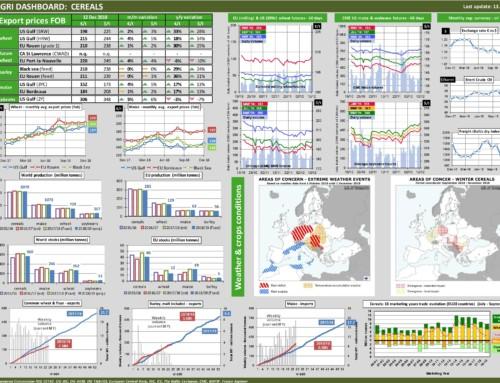 Dg agri dashboard: cereals – European Market Observatory – 13 dicembre
