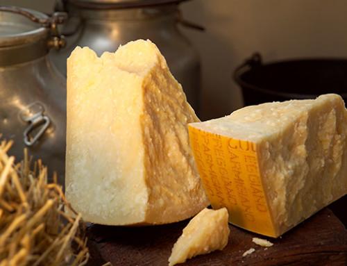 Parmigiano Reggiano, a Cheese con Slow Food nella lotta contro l'omologazione del gusto. No ai fermenti selezionati in laboratorio