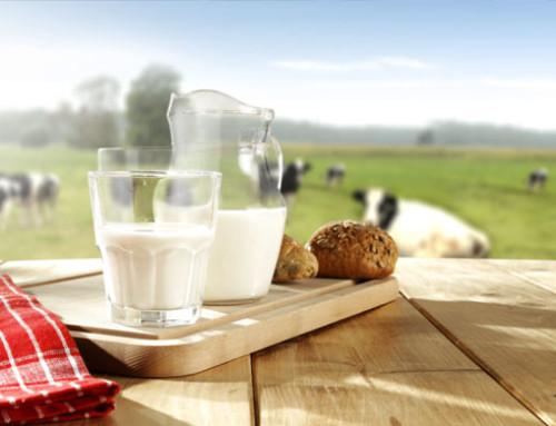 Rassegna dei prezzi internazionali del latte di ottobre 2019
