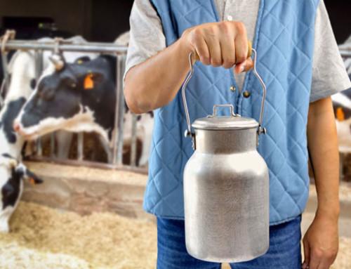 Il prezzo del latte spot in Italia