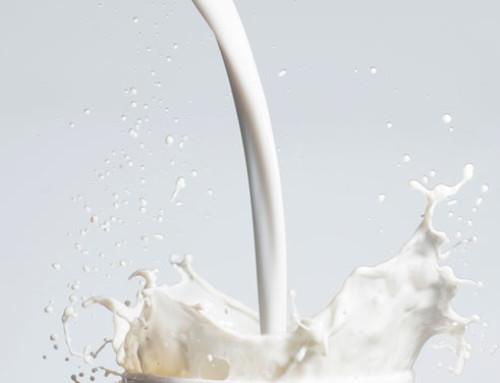 Approvato l'emendamento al Decreto Milleproroghe dell'onorevole Maria Chiara Gadda: le registrazioni dei produttori lattiero caseari ogni tre mesi