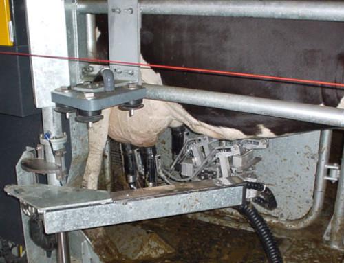 Progettazione della stalla robotizzata