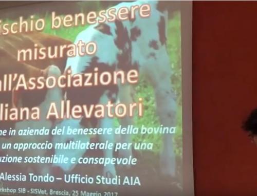 WORKSHOP SIB-SISVET BENESSERE Brescia 25 maggio 2017: Alessia Tondo – Ufficio Studi AIA