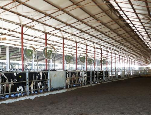 L'etica applicata alla produzione del latte: ne discutiamo in Fiera a Cremona