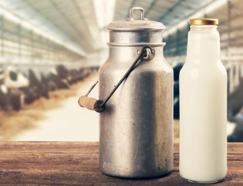 Lieve incremento in Europa a Maggio 2021 del prezzo del latte bovino
