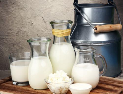 La scomparsa dei gobbi e la pastorizzazione del latte