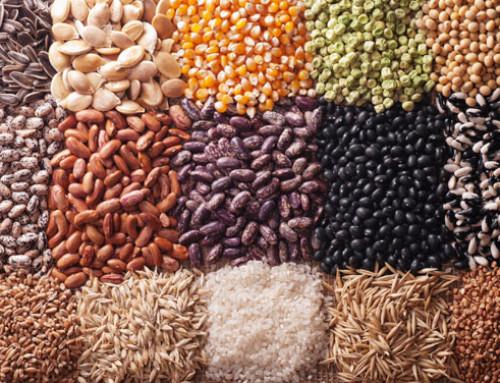 FAO, i sistemi alimentari mondiali dipendono dalla biodiversità