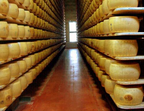 """Il Consorzio di tutela Parmigiano Reggiano sarà official partner di Cheese 2019 """"Naturale è possibile"""""""