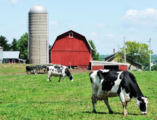 Benessere degli animali da reddito negli USA: Il punto di vista economico