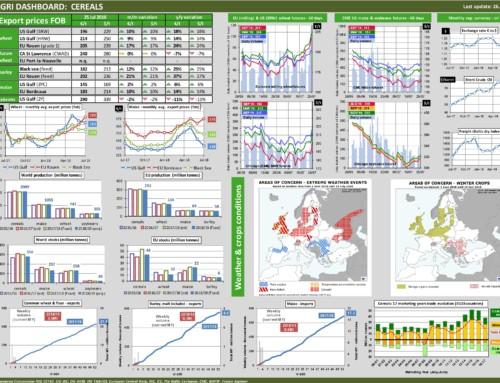 Dg agri dashboard: cereals – European Market Observatory – 26 luglio