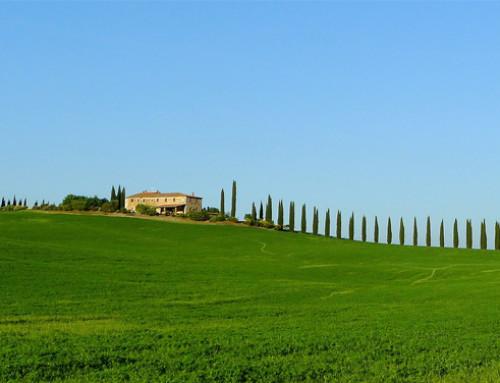 ISTAT, in Italia settore agrituristico in crescita per offerta di servizi, valore economico e turismo