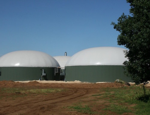Piano Nazionale Integrato per l'Energia e il Clima. CIB: l'agricoltura è pronta a dare il proprio contributo