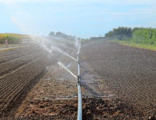Riutilizzare l'acqua per irrigare i campi: il Consiglio adotta un orientamento generale
