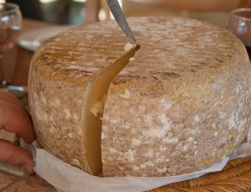 Ovinus: prorogati al 31/12/2019 i termini per la partecipazione al I° Concorso Internazionale dei formaggi ovini
