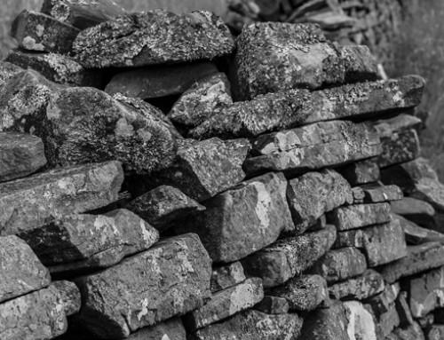 Trentino, l'arte dei muretti a secco, patrimonio Unesco: parte un progetto per il recupero