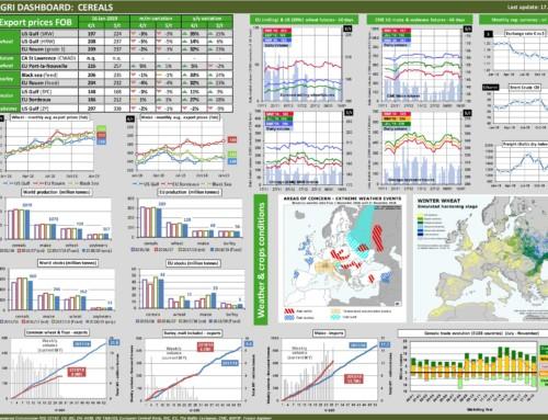 Dg agri dashboard: cereals – European Market Observatory – 17 gennaio