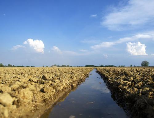 """Piano Invasi, firmato il DPCM e assegnati 260 mln. Centinaio: """"Diamo risposte concrete alle richieste del settore agricolo"""""""