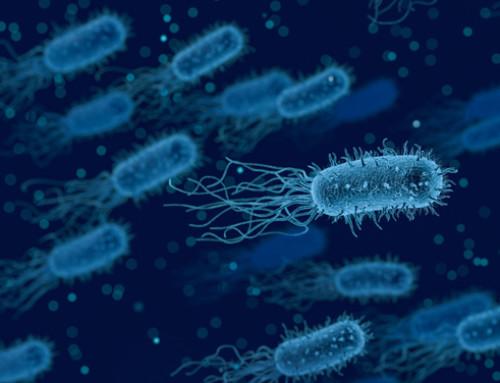 L'OMS lancia un nuovo strumento per combattere l'antibioticoresistenza