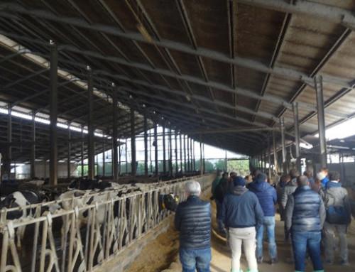"""Evento dimostrativo NEW4REP del CREA di Lodi """"Sensori per migliorare l'efficienza riproduttiva e il benessere delle bovine"""""""