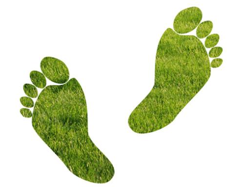 Il dovere della sostenibilità: proposte molto pratiche in Fiera a Cremona