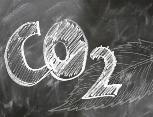 Invited review – Emissione ed attenuazione dei gas serra provenienti dagli allevamenti da latte: la bovina, il letame e il terreno