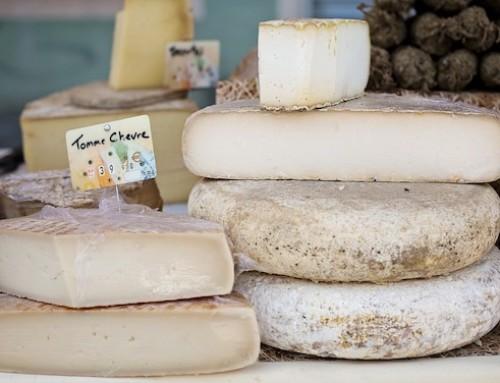 Ricerca e prodotti lattiero-caseari: valutazione della sicurezza di batteri Gram-negativi da formaggi tradizionali francesi