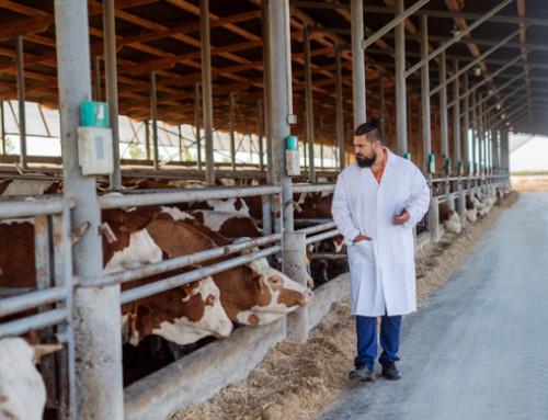 FDA, report su antimicrobici venduti o distribuiti nel 2018 negli USA: calo del 38% dal 2015, anno di punta delle vendite e della distribuzione