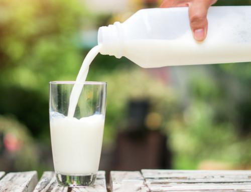 Latte e latticini aumentano il rischio di cancro? L'AIRC fa chiarezza