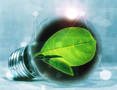 La transizione ecologica: l'ennesima seccatura?