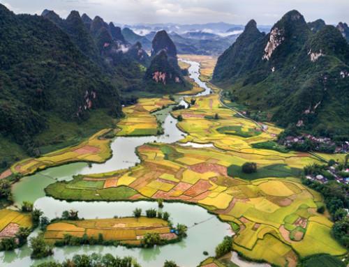 L'accordo di libero scambio UE-Vietnam ottiene il via libera dalla Commissione per il commercio