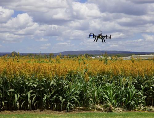 Nasce IBF Servizi, il primo hub tecnologico per l'agricoltura di precisione in Italia