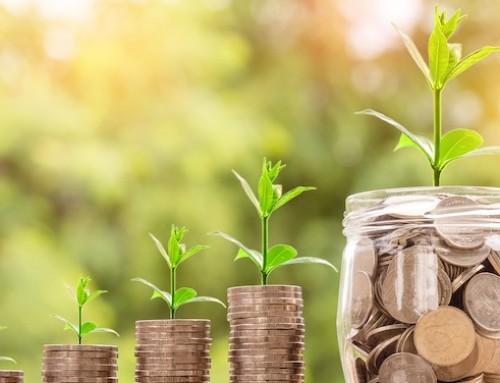 BEI: 700 milioni di euro per agricoltura e bioeconomia a sostegno degli investimenti privati