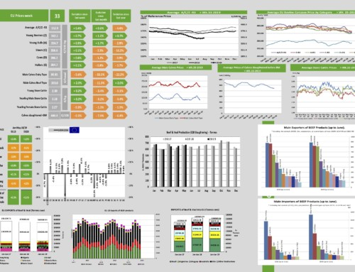 Dg agri dashboard: meat and veal – European Meat Market Observatory – 22 agosto