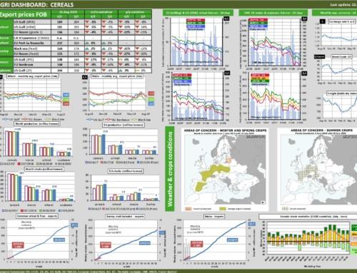 Dg agri dashboard: cereals – European Market Observatory – 22 agosto