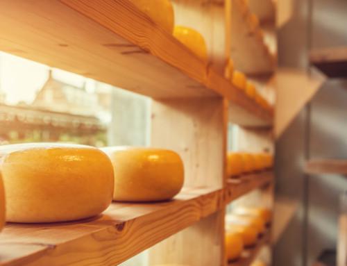 I proverbi del formaggio