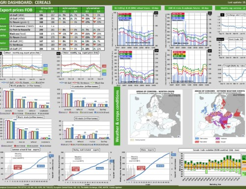 Dg agri dashboard: cereals – European Market Observatory – 19 settembre