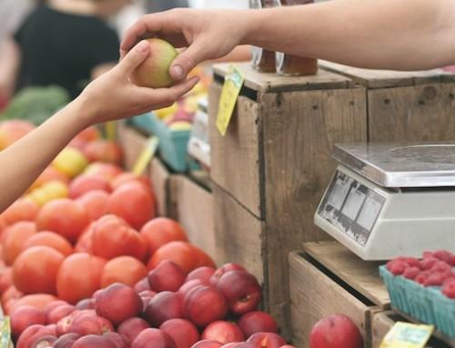 Cooperazione di filiera, nuovo bando della Regione Lazio per le imprese agricole: il punto dell'agronomo