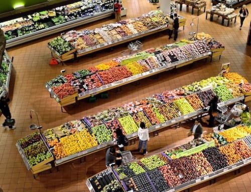 Commissione AGRI: la politica di concorrenza dell'UE dovrebbe aiutare gli agricoltori ad aumentare la qualità e la sostenibilità