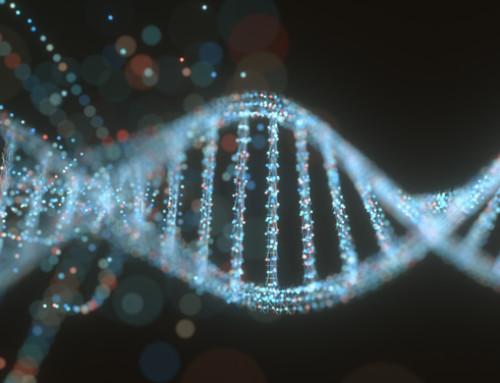 La genetica per la stalla etica