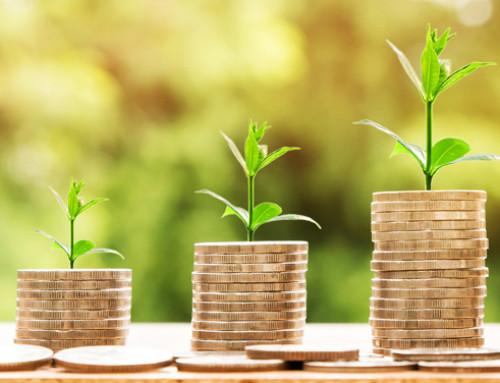 Tra sostenibilità sociale e sostenibilità ambientale: i Talk show di Ruminantia a Fieragricola 2020