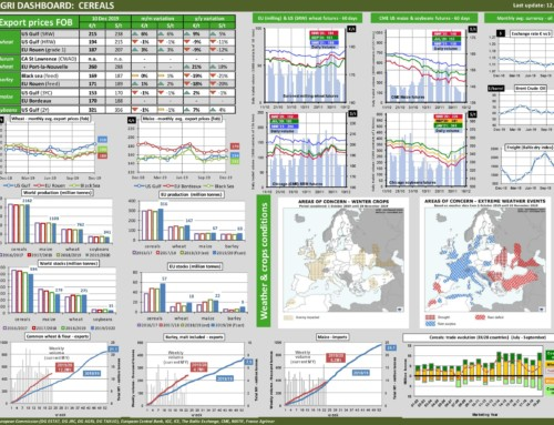 Dg agri dashboard: cereals – European Market Observatory – 12 dicembre