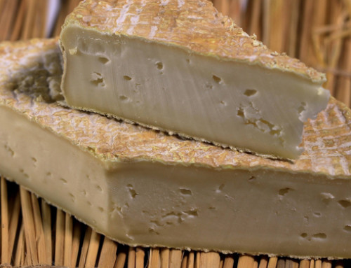Aflatossine nei formaggi e cambiamenti climatici