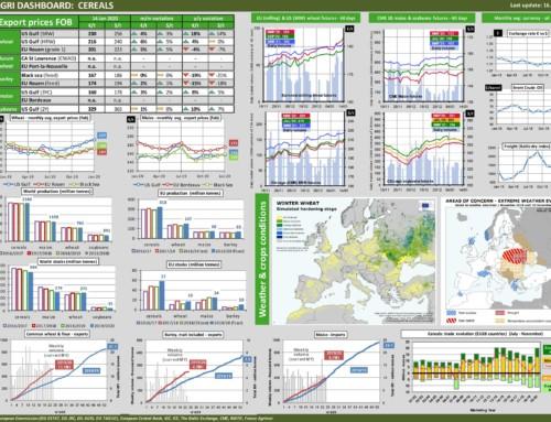 Dg agri dashboard: cereals – European Market Observatory – 16 gennaio