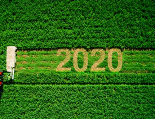 Auguriamoci che il 2020 ci regali un bel vaccino