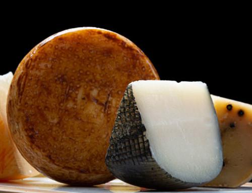 Progetto EU Life TTGG: efficienza e sostenibilità per le filiere dei formaggi DOP IGP